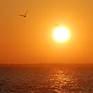 Lagoon in sunrise, and two gulls by Antanas