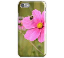 bumblebee landing on pink cosmos flower iPhone Case/Skin