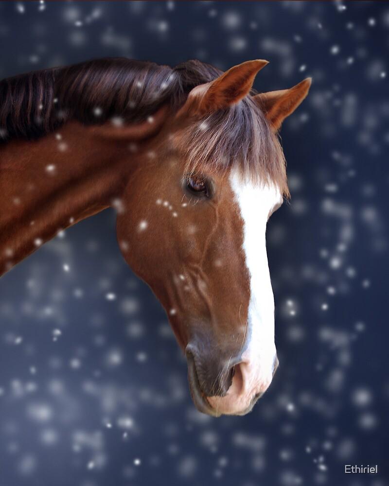 Chestnut Pony in the Snow by Ethiriel