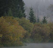 Red Rock in Fog #4 by Ken McElroy