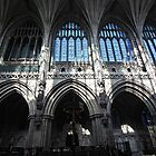 Lichfield Cathedral 1 by MartinMuir