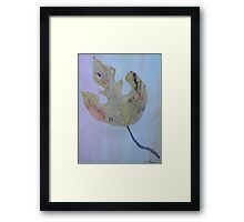 Fall Changes Cool Framed Print