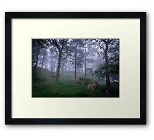 In Mist Framed Print
