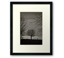 Tree alone Framed Print