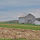 Barn in October by Jennifer P. Zduniak