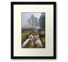 Misty Days Framed Print