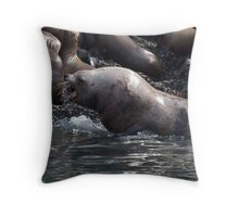 Bull Moose Sea Lion, Juneau, Alaska Throw Pillow