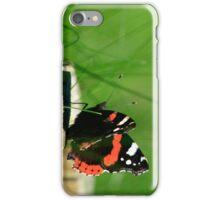 Butterfly Gazing iPhone Case/Skin