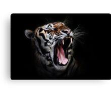 Tiger black Canvas Print