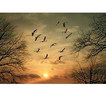 AN AUTUMN SUNSET Photographic Print