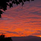 Yesterday's Dusk by David McMahon