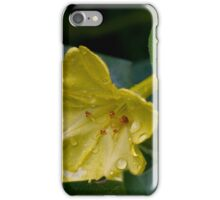 Four O'Clock and a Passing Shower iPhone Case/Skin