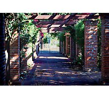 The Walkway Photographic Print