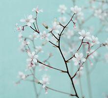 rêve floral by Iris Lehnhardt