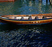 Wooden Longboat  by BearheartFoto
