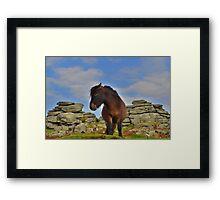 Dartmoor: 'This is my Best Side' Framed Print