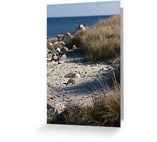 Crystal Crescent Beach, Nova Scotia, Canada Greeting Card