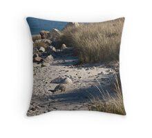 Crystal Crescent Beach, Nova Scotia, Canada Throw Pillow