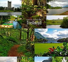 Killarney National Park, Ireland by Andrés Hurtado