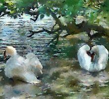 The Swan dance by buttonpresser