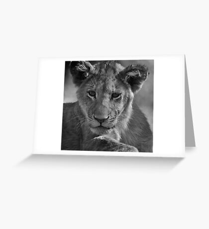 Dreams Of Being King Greeting Card