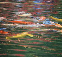 Japanese Koi Abstract by Sunshinesmile83