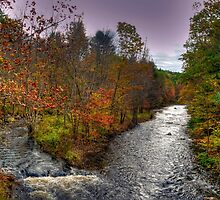 Souhegan River by Monica M. Scanlan