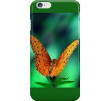 Cruiser (Vindula arsinoe) iPhone Case/Skin
