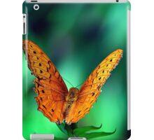 Cruiser (Vindula arsinoe) iPad Case/Skin
