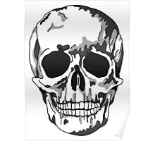 Modern Memento Mori, Shadow Skull Poster