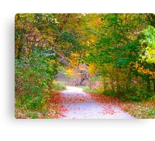 Nature's archway to awe Canvas Print