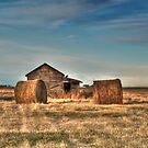 Golden Hay by Lisa Knechtel