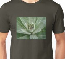 Great or Common Mullein - Verbascum thapsus Unisex T-Shirt