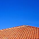 The Roof and The Sky by vanyahaheights