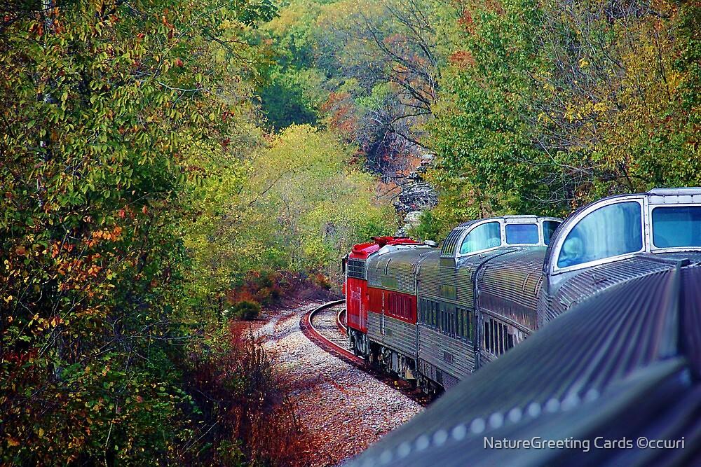 Riding The Ozark Rails by NatureGreeting Cards ©ccwri