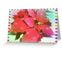Poinsettia for Christmas Greeting Card