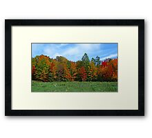 Colorbook Fall,Fifield Wisconsin U.S.A. Framed Print