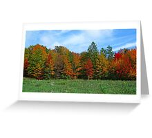 Colorbook Fall,Fifield Wisconsin U.S.A. Greeting Card