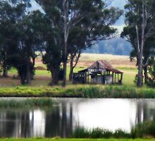Country Scene - Pokolbin - Hunter Valley by Marilyn Harris