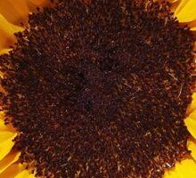 Sunflower Laptop Sticker Sticker