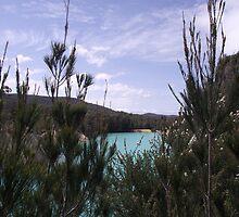 Little Blue Lake - near Gladstone by gaylene