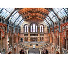 Natural History Museum - HDR Photographic Print