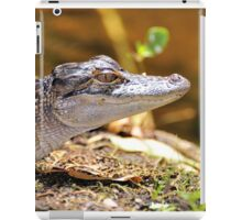 Little Gator (Alligator, mississipiensis) iPad Case/Skin