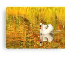 Swan, Painshill Lake Canvas Print