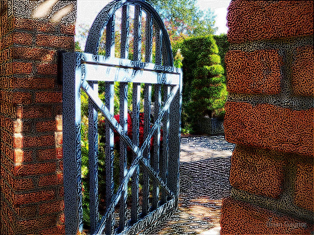 The Walled Garden by Brian Gaynor