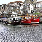 The Harbour at Seahouses,Northumberland by Trevor Kersley