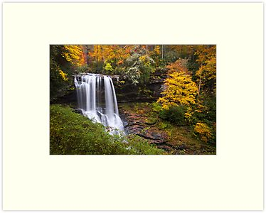 Autumn at Dry Falls - Highlands NC Waterfalls by Dave Allen