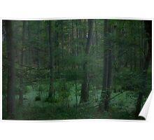 &&&  Fairytales  &&&  green forest wonder's. Poland. by Brown Sugar. Views (121) Favs (2). dziekuje ! Toda raba ! friends. Poster