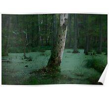 Malachite landscape  .Μολοχίτης  molochitis , mallow-green . Favorites: 2 Views: 183 . Thx! Poland . by Brown Sugar . Poster