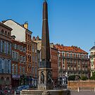 France. Toulouse. Fountain. by vadim19